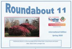 Roundabout 11 Spring 20 International Edition